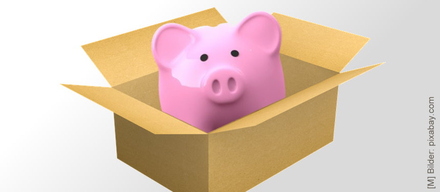 Illustration: Sparschwein in einem Paket